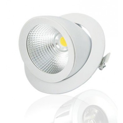 Spot Escargot Rond LED COB 30W orientable | Led Flash