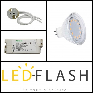 Kit x2 LEDs GU5.3 4W I Led Flash