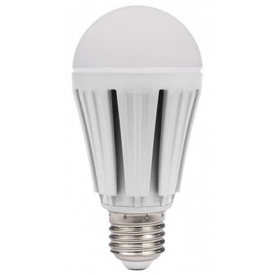 Ampoule led 12 watt (eq. 69 watt) | Led Flash