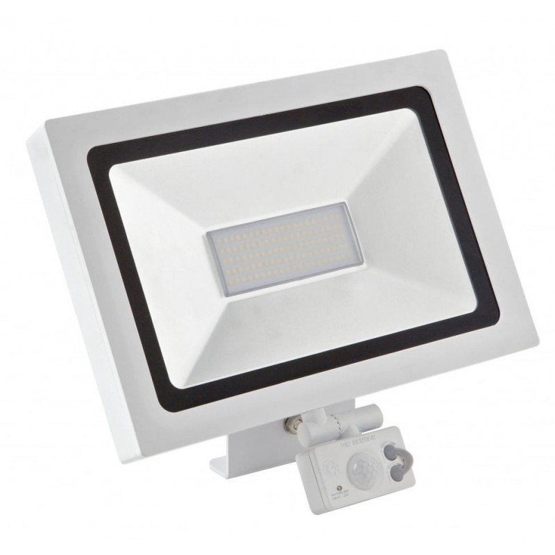 Projecteur Led 30 Watt Blanc Avec Détecteur | Led Flash ...